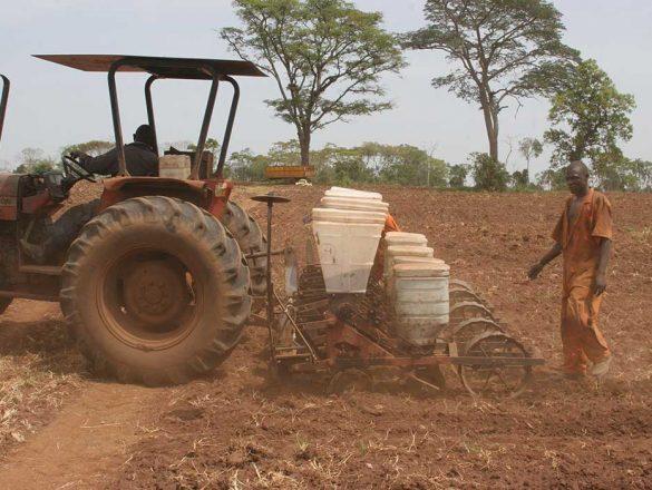 farming_nalweyo